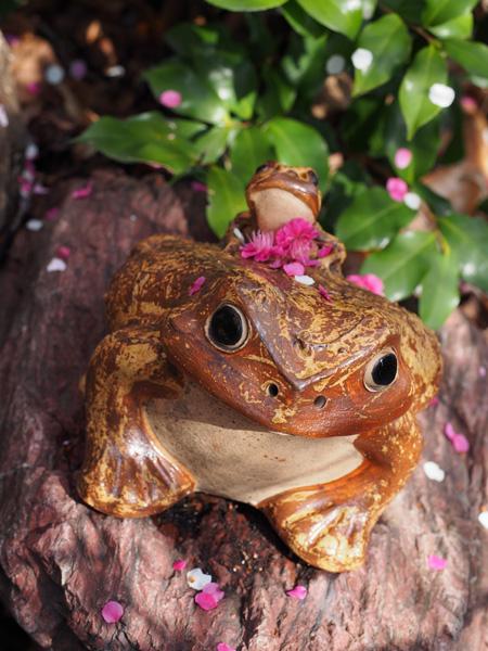 香取神社 香梅園の梅とカエル