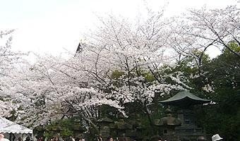 増上寺徳川家霊廟