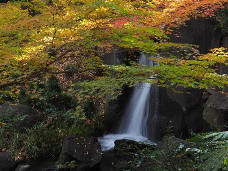 滝とモミジ