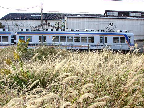 ns2009 (21)a