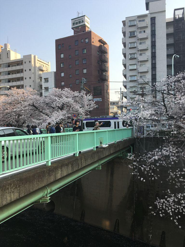 昇司 から 橋 小金沢 面影