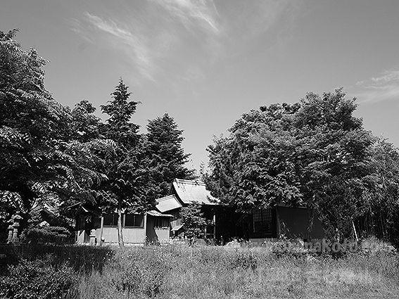 190511由貴神社4