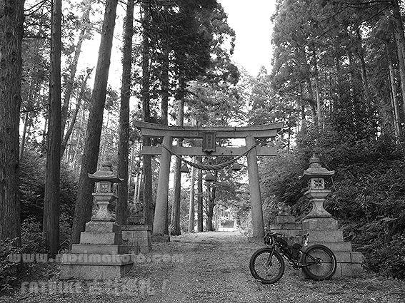 190729熊野神社5