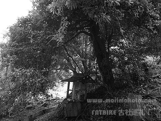 190729小野神社市杵島2