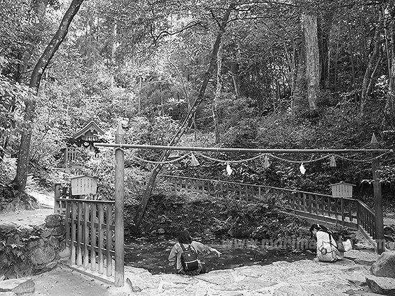 190508佐久佐神社八重垣4