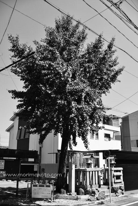 140909中村区太閤2-1