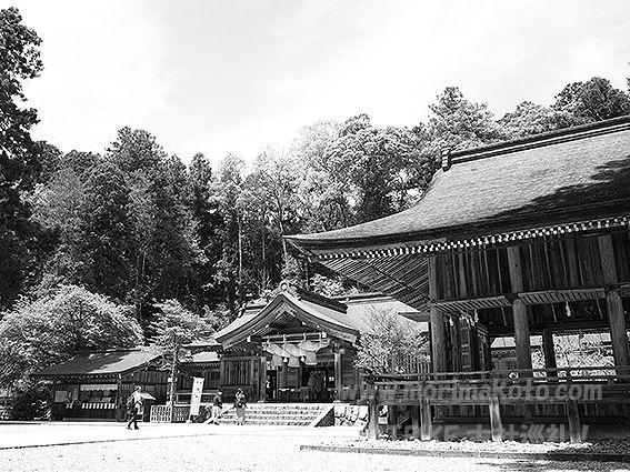 190508熊野坐神社4