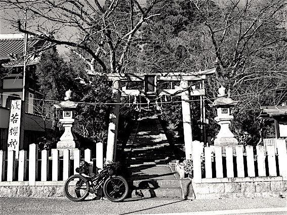 171215若櫻神社1