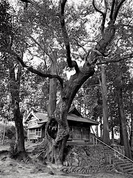 190130長谷神社六所1