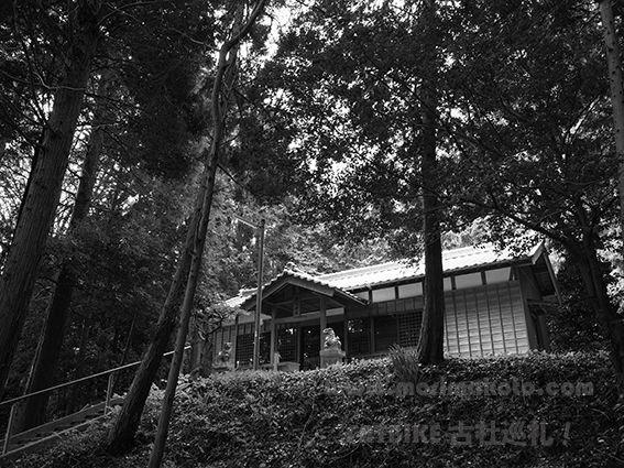 161102事忌神社3