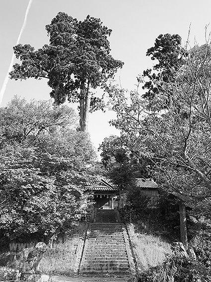 190510長見神社1