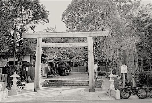 171215等彌神社1