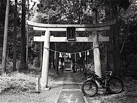 180730熊野神社1