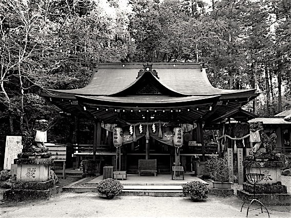 171215等彌神社3