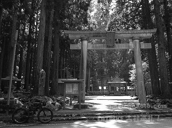 190729大川神社大宮1