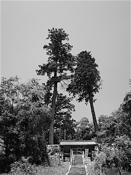 190524山狭神社(上社)4