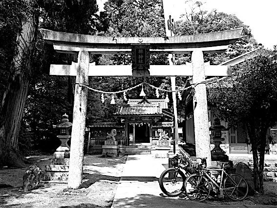 190502櫟原神社(櫟)2