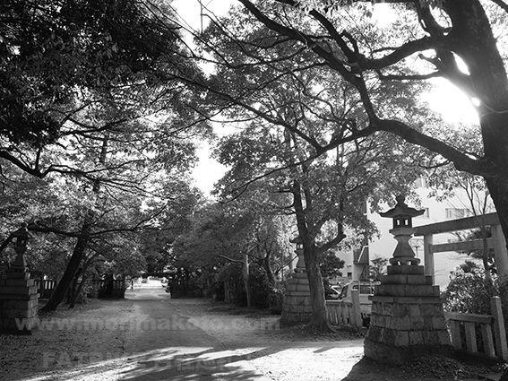 170107比奈守神社(茜部)2