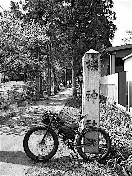 190502櫟原神社(櫟)1