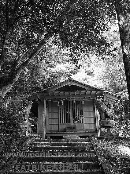 190509大井神社3