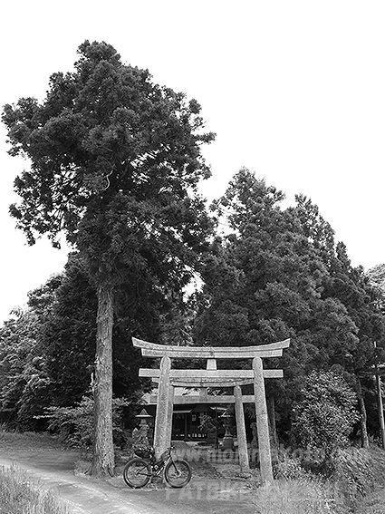 190514久良彌神社1
