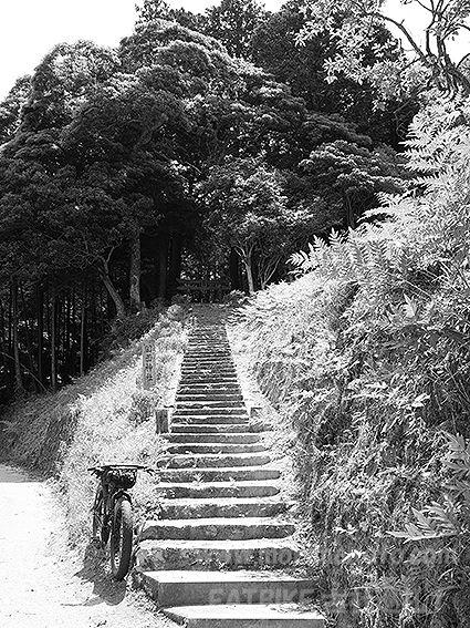 190530田面神社1