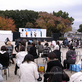 091129NPフェス5