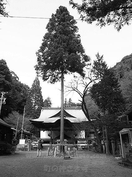 151219内々神社6