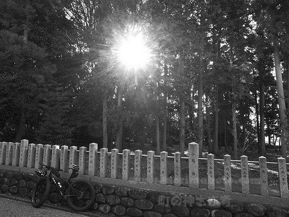 151219虫鹿神社4