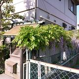 100501西区天塚町3cl1