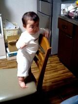 椅子に立つねね