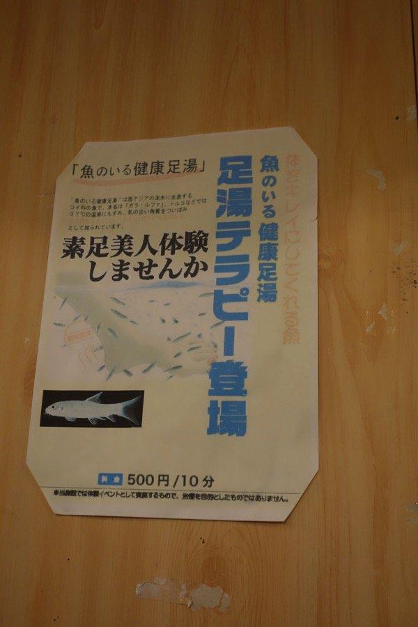 DSC05273