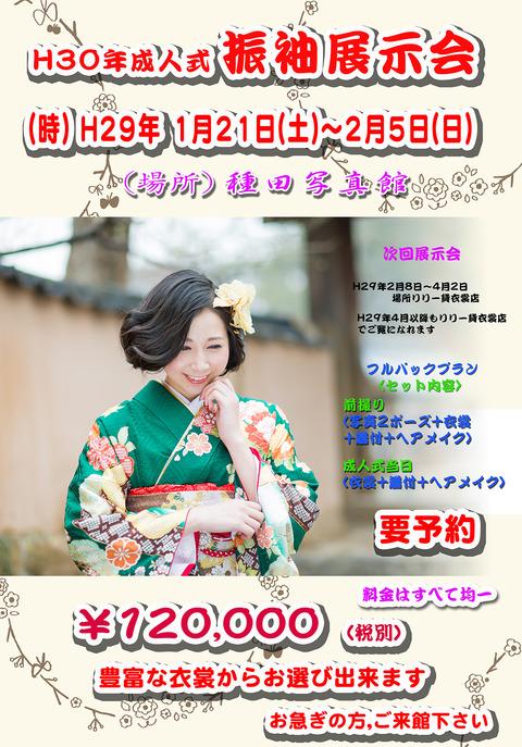 2017成人式ポスター2