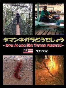 矢野マレーシア電子書籍表紙