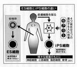scanner001