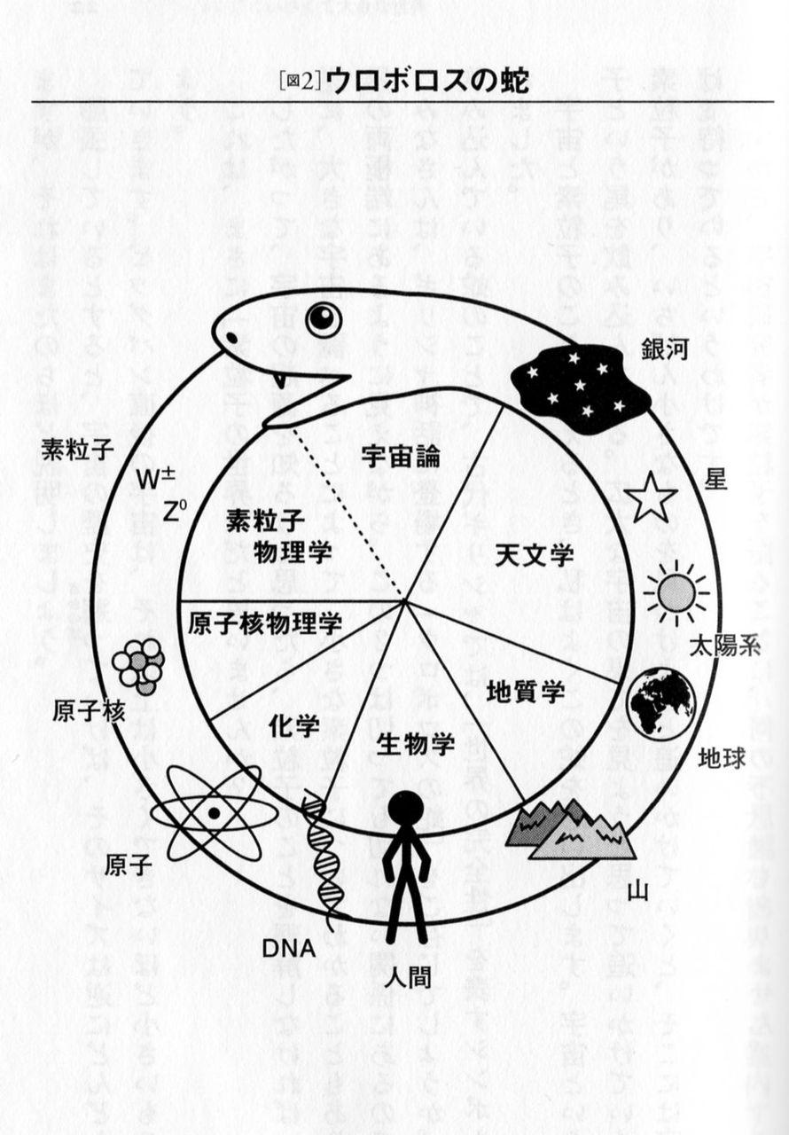 http://livedoor.blogimg.jp/yaori/imgs/9/9/991b7091.jpg