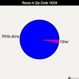 15234race