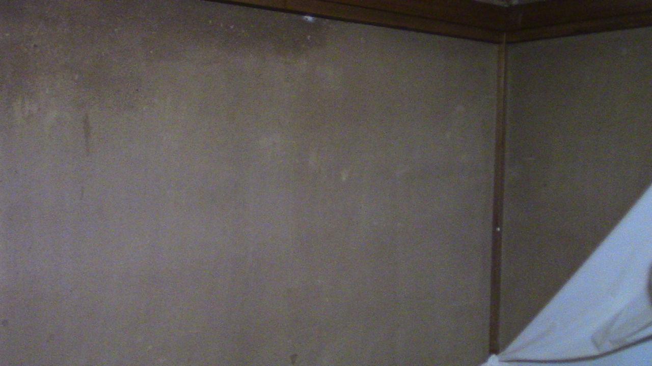 和室の砂壁を変えたい ベニヤ板で板壁にちゃれんじするわ ちゃれる