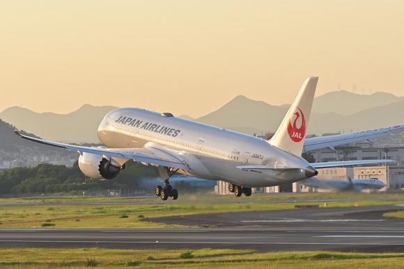 伊丹空港_20210720_04