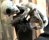 2007年にメキシコで捕らえられたエイリアンの赤ちゃんらしき生命体