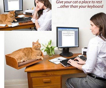 ネコがキーボードに乗ってきてこまるアナタに
