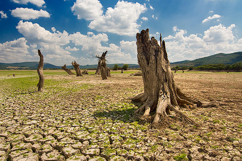 dry_land