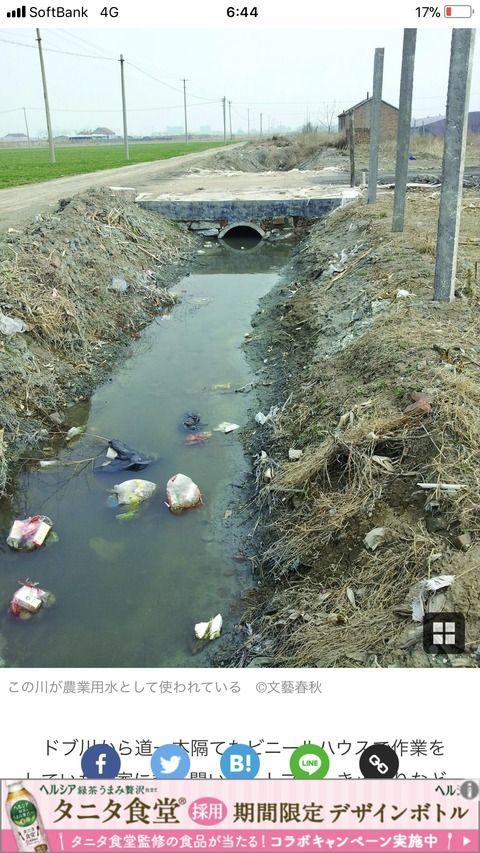 【画像】中国の野菜を育てる水がヤバすぎると話題にwww