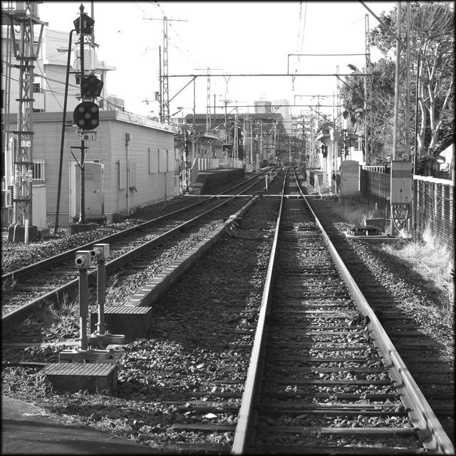 nishinari nishinari