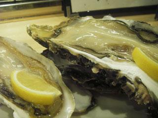 有明牡蠣と岩手牡蠣の食べ比べ