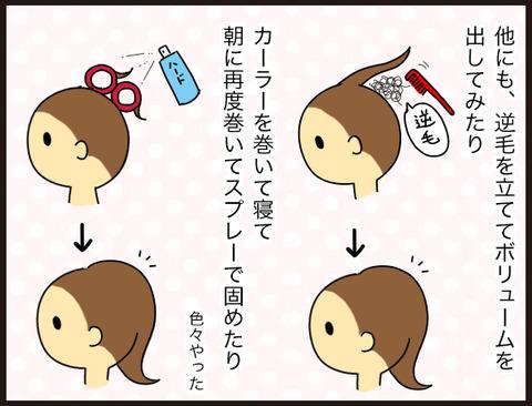 【髪】薄毛にウィッグという選択2
