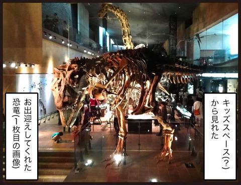 いのちのたび博物館に行ってきました6