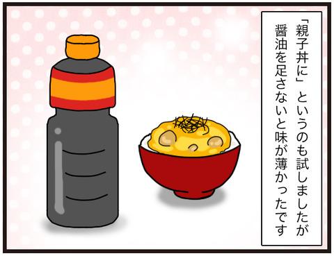 カボチャの煮汁8