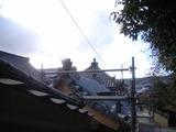 sanmonn2