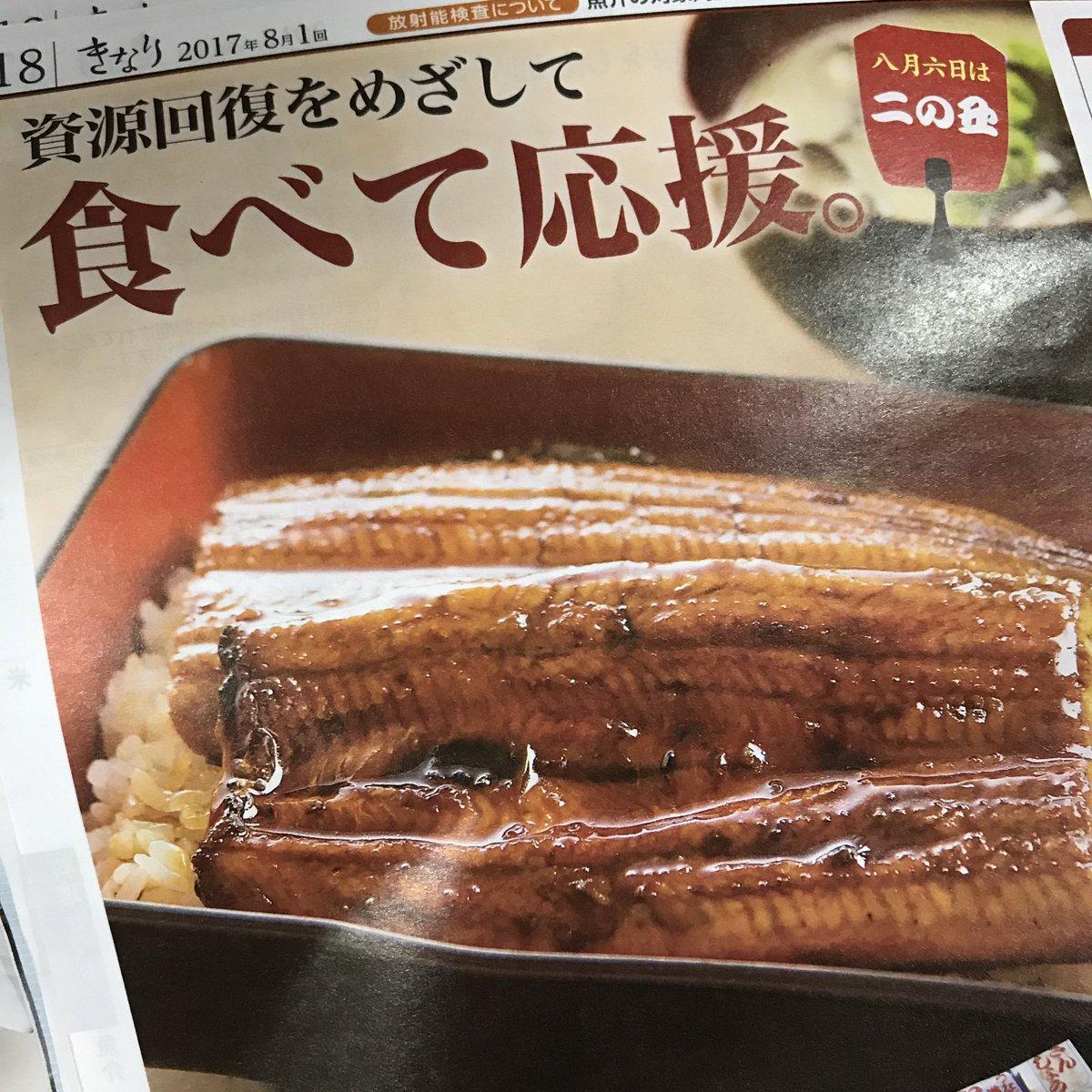 【悲報】日本人さん、本当にうなぎを絶滅させてしまう。これが食べて応援の結果か・・・・・  [517459952]->画像>15枚